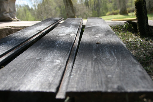 Charred cedar shiplap siding